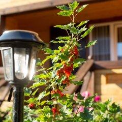 Гостиница Даурия в Листвянке - забронировать гостиницу Даурия, цены и фото номеров Листвянка фото 8