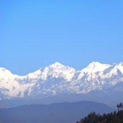 Отель View Bhrikuti Непал, Лалитпур - отзывы, цены и фото номеров - забронировать отель View Bhrikuti онлайн фото 3