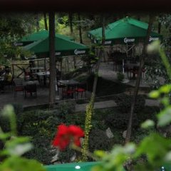Отель Restaurant Dreri Албания, Тирана - отзывы, цены и фото номеров - забронировать отель Restaurant Dreri онлайн фото 12