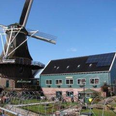 Отель B&B Houseboat between Amsterdam Windmills Нидерланды, Амстердам - отзывы, цены и фото номеров - забронировать отель B&B Houseboat between Amsterdam Windmills онлайн фото 6