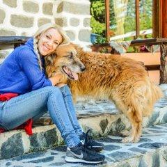 Ski Hotel Katerina Банско с домашними животными