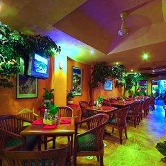Отель Paradise Inn гостиничный бар