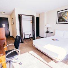 Stay Hotel Waikiki комната для гостей фото 2