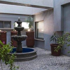 Отель Holiday Inn Suites Zona Rosa Мексика, Мехико - отзывы, цены и фото номеров - забронировать отель Holiday Inn Suites Zona Rosa онлайн фото 6
