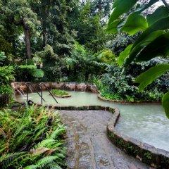 Terra Nostra Garden Hotel фото 5