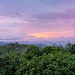 Отель Amaya Hills Шри-Ланка, Канди - отзывы, цены и фото номеров - забронировать отель Amaya Hills онлайн пляж