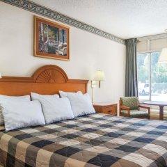 Отель Days Inn by Wyndham Lake City I-75 США, Лейк-Сити - отзывы, цены и фото номеров - забронировать отель Days Inn by Wyndham Lake City I-75 онлайн комната для гостей фото 4