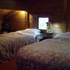 Отель Pension Tabibito Хакуба комната для гостей фото 2