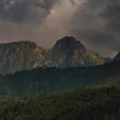 Отель Siwarna. Ośrodek Wypoczynkowy Natura Tour Sp. Z O.o. Косцелиско фото 8