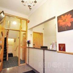 Отель Elmwood Hotel Великобритания, Лондон - отзывы, цены и фото номеров - забронировать отель Elmwood Hotel онлайн интерьер отеля фото 3