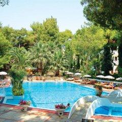 Отель Porfi Beach Hotel Греция, Ситония - 1 отзыв об отеле, цены и фото номеров - забронировать отель Porfi Beach Hotel онлайн с домашними животными