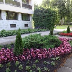 Отель Cottage Sanatorium Belorusija фото 3