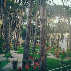 Отель Pishat E Buta Албания, Голем - отзывы, цены и фото номеров - забронировать отель Pishat E Buta онлайн фото 7