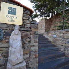 Отель Quinta da Veiga Саброза с домашними животными