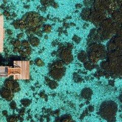 Отель Tahiti Ia Ora Beach Resort - Managed by Sofitel Французская Полинезия, Пунаауиа - отзывы, цены и фото номеров - забронировать отель Tahiti Ia Ora Beach Resort - Managed by Sofitel онлайн фото 6