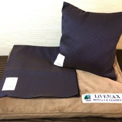 Hotel Livemax Tokyo Bakurocho Токио удобства в номере