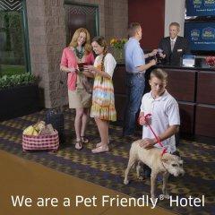 Отель Best Western Plus Dragon Gate Inn США, Лос-Анджелес - отзывы, цены и фото номеров - забронировать отель Best Western Plus Dragon Gate Inn онлайн интерьер отеля фото 3