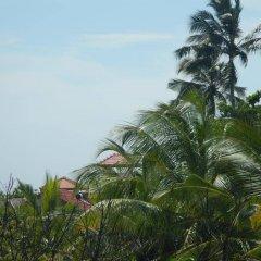 Отель Villa 61 Шри-Ланка, Берувела - отзывы, цены и фото номеров - забронировать отель Villa 61 онлайн фото 5