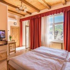Отель Apartmany Victoria Чехия, Карловы Вары - отзывы, цены и фото номеров - забронировать отель Apartmany Victoria онлайн фото 11