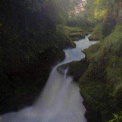 Отель View Point Непал, Покхара - отзывы, цены и фото номеров - забронировать отель View Point онлайн приотельная территория фото 2