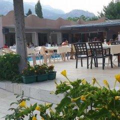 Отель Zara бассейн