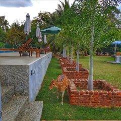 Отель Saji-Sami Шри-Ланка, Анурадхапура - отзывы, цены и фото номеров - забронировать отель Saji-Sami онлайн фото 16