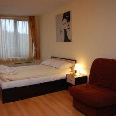 Апартаменты Elit Pamporovo Apartments Студия с различными типами кроватей фото 20