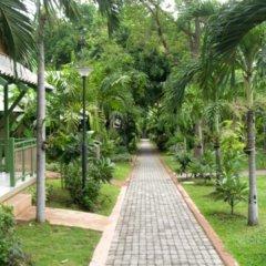 Pattaya Garden Hotel 3* Бунгало с различными типами кроватей фото 7