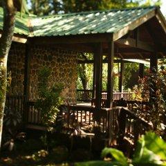Отель The Lodge at Pico Bonito фото 5