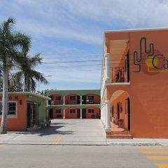 Отель Cactus Inn Los Cabos Мексика, Эль-Бедито - отзывы, цены и фото номеров - забронировать отель Cactus Inn Los Cabos онлайн парковка