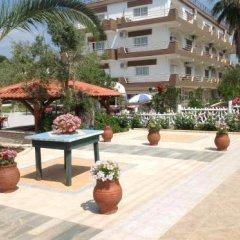 Отель Olympic Bibis Hotel Греция, Метаморфоси - отзывы, цены и фото номеров - забронировать отель Olympic Bibis Hotel онлайн фото 8