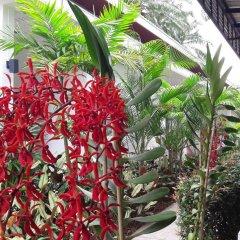 Отель The Fong Krabi Resort фото 4