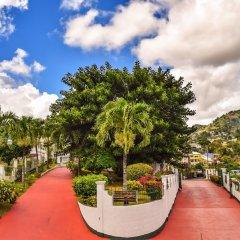 Отель Grenadine House фото 10