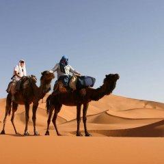Отель Haven La Chance Desert Hotel Марокко, Мерзуга - отзывы, цены и фото номеров - забронировать отель Haven La Chance Desert Hotel онлайн с домашними животными
