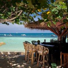 Отель Koh Tao Montra Resort & Spa гостиничный бар