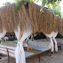 Changa Hotel Турция, Чавушкёй - отзывы, цены и фото номеров - забронировать отель Changa Hotel онлайн фото 4