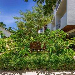 Отель Plumeria Maldives фото 13