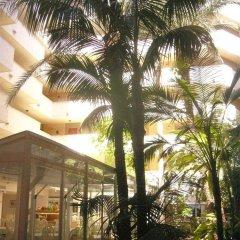 Hotel JS Corso Suites фото 6