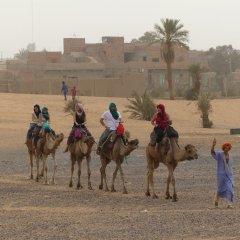 Отель Auberge Les Roches Марокко, Мерзуга - отзывы, цены и фото номеров - забронировать отель Auberge Les Roches онлайн с домашними животными