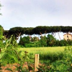 Отель Kolping Hotel Casa Domitilla Италия, Рим - отзывы, цены и фото номеров - забронировать отель Kolping Hotel Casa Domitilla онлайн приотельная территория