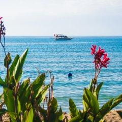 Side Kleopatra Beach Hotel Турция, Сиде - 1 отзыв об отеле, цены и фото номеров - забронировать отель Side Kleopatra Beach Hotel онлайн пляж фото 2