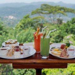 Отель Amaya Hills Шри-Ланка, Канди - отзывы, цены и фото номеров - забронировать отель Amaya Hills онлайн в номере фото 2