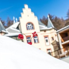 Отель Villa Waldkonigin Горнолыжный курорт Ортлер фото 9