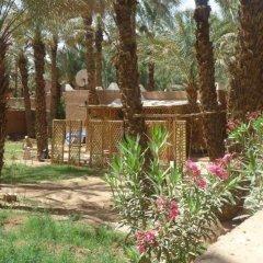 Отель Riad Tagmadart Ferme D'hôte Марокко, Загора - отзывы, цены и фото номеров - забронировать отель Riad Tagmadart Ferme D'hôte онлайн фото 3