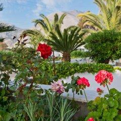 Отель Makarios Греция, Остров Санторини - отзывы, цены и фото номеров - забронировать отель Makarios онлайн фото 5