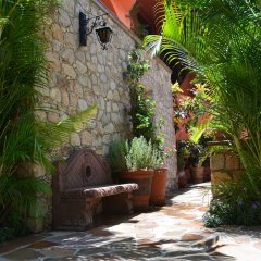 Отель Boutique Casa Bella Мексика, Кабо-Сан-Лукас - отзывы, цены и фото номеров - забронировать отель Boutique Casa Bella онлайн фото 6