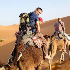 Отель Merzouga Camp Марокко, Мерзуга - отзывы, цены и фото номеров - забронировать отель Merzouga Camp онлайн фото 6