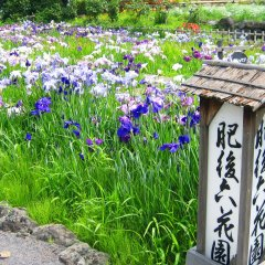 Aso Villa Park Hotel Минамиогуни фото 2