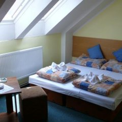 Hotel Monika Хеб удобства в номере