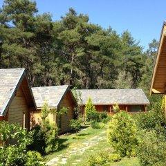 Olympos Village Ecologic Activity Hotel Кемер фото 21